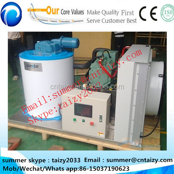 Series Taizy Ice Flake Making Machine ice cube making machine industrial Concrete Ice Machine