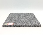 Hot Selling Noise Reduction Sound-Proof Aluminum Foam Panel Automotive With Great Price