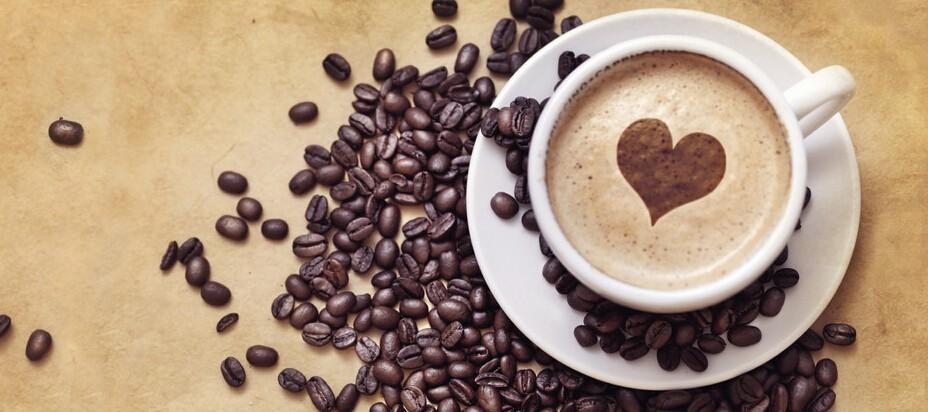 Or lavement café bio ECOCERT OEM 2019