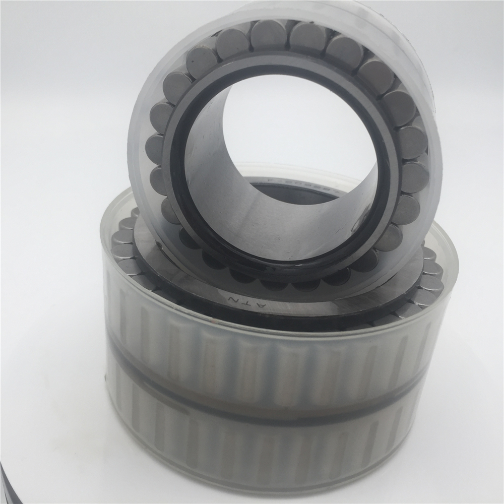F93666.2 Full Complement Cylindrical Roller Bearing Without Outer Ring F 93666.2