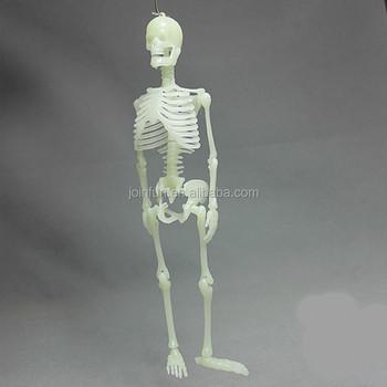 Brauch Menschen Skelett Spielzeug,Lebensechte Menschlichen Skeletts ...