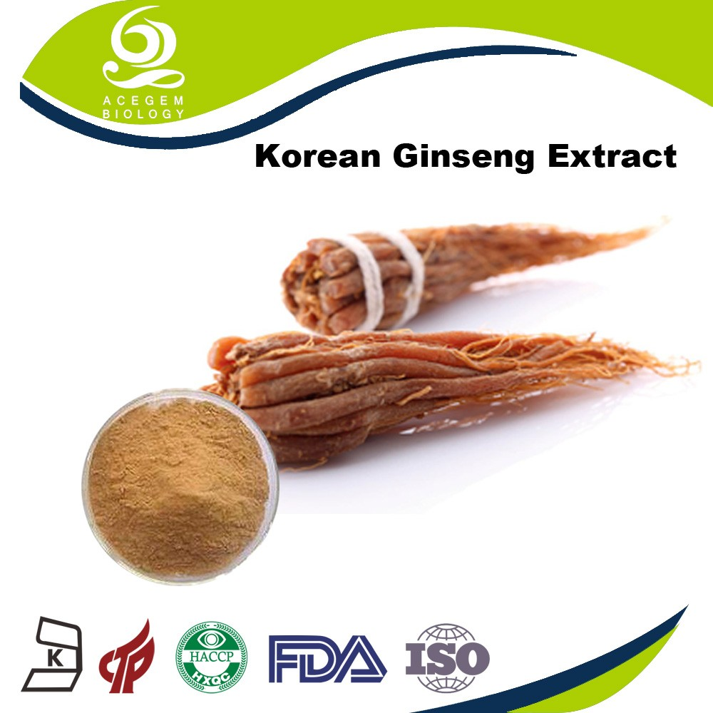 Red ginseng extract Korean/ginseng C.A. Meyer 5% ginsenosides hplc