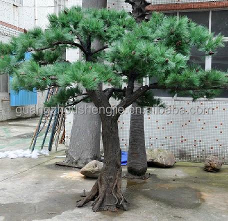 Q083105 Large Outdoor Bonsai Trees Ornamental Foliage