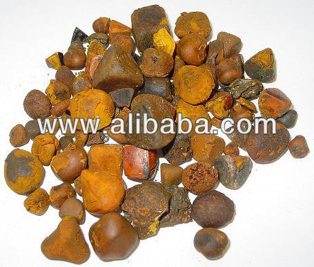 Ox Gallstones And Cow Bezoar