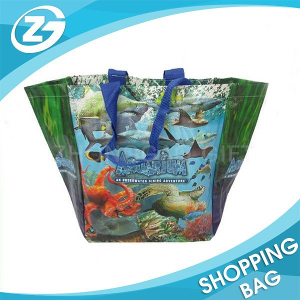 Sea World Promotional Non Woven Bag for Tourist