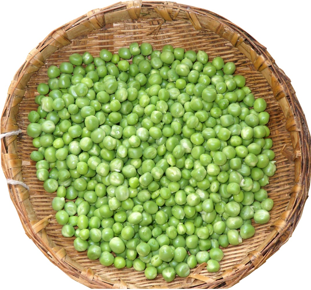 Good quality IQF Frozen fresh Green Soy bean