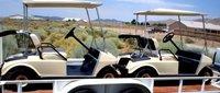 Hoffmans Golf Carts