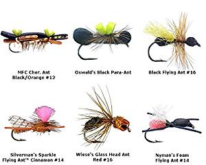 Ant fly fishing flies kit - collection of 6 flies - Ant Dry Flies