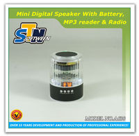Professional Wireless digital music player with fm radio