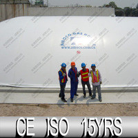 Gas Collector, Biogas Storage Bag Dome For Thailand Biogas Plant