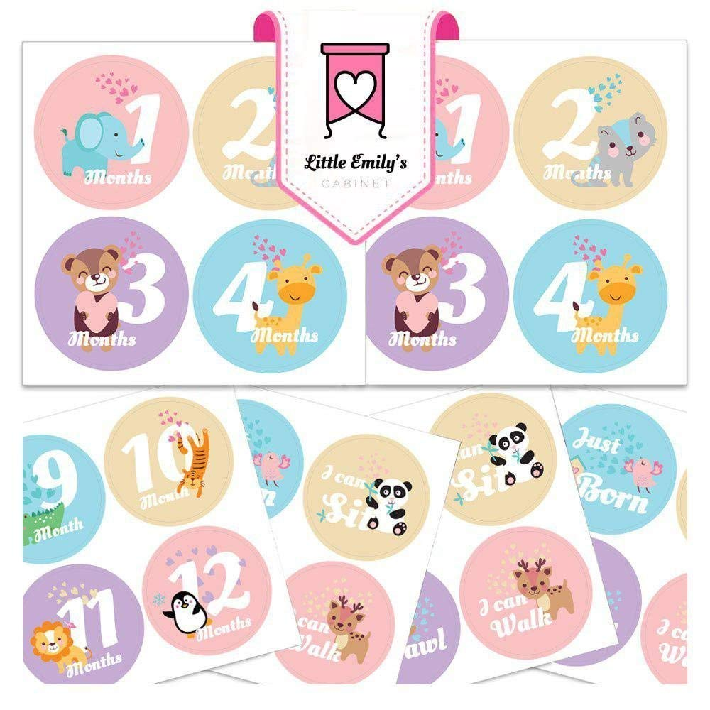 Baby Girl Monthly Milestone Stickers - Best First Year Scrapbook Photo Keepsake and Shower Gift - Lovely Belly Stickers for Newborn Infant (Set of 16) …
