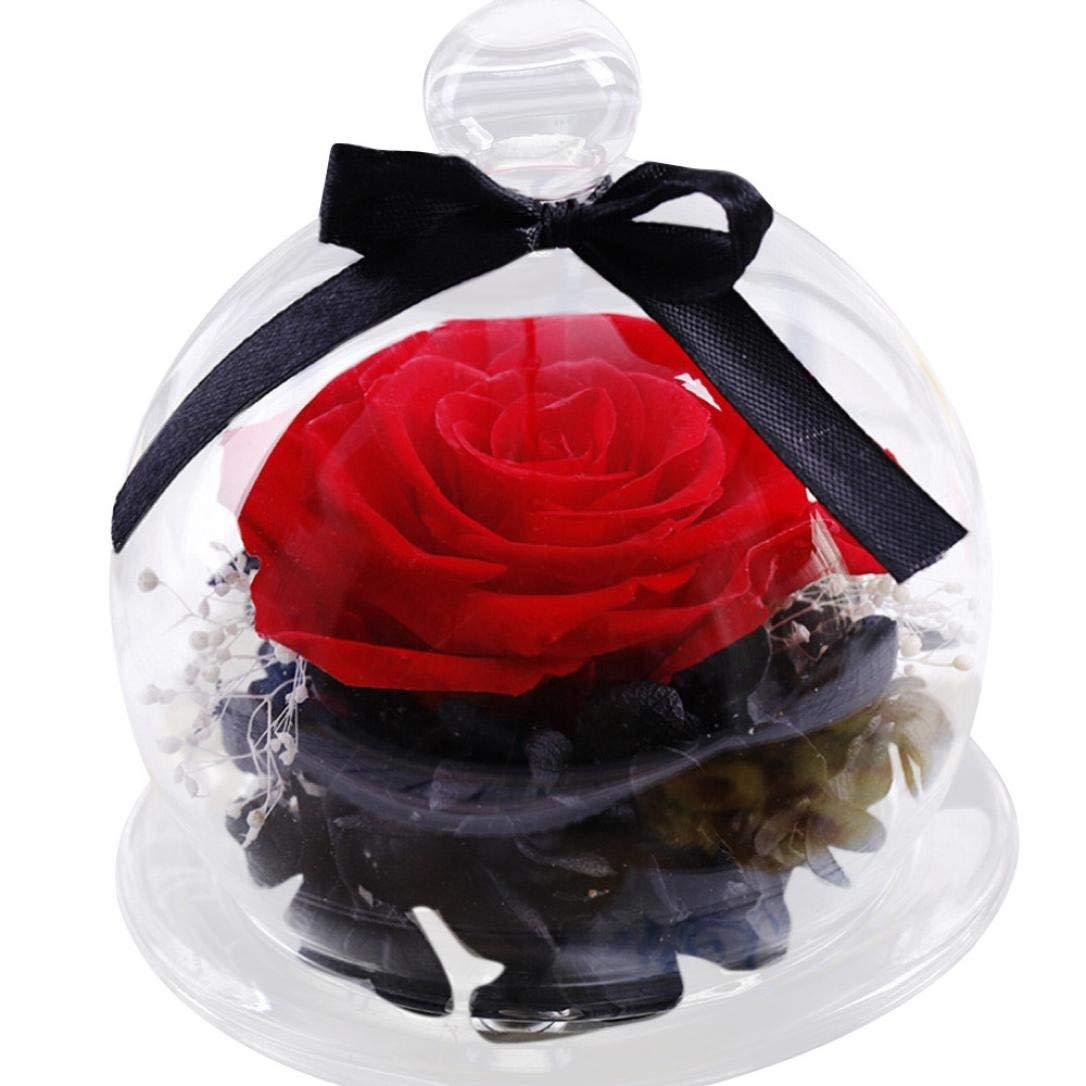 Happy Valentine Day! SUKEQ Never Withered Roses Flower in Glass Dome, Preserved Flower Rose Best Gift for Valentine's Day, Wedding, Birthday, Anniversary