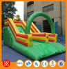 Hot Selling Used Water Park and Dragon Slide