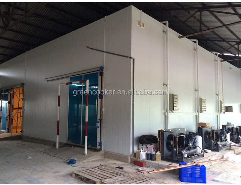 SKD Format Fruit Cold Room Walk In Freezer/Refrigerator/Chiller Storage Refrigeration Equipment