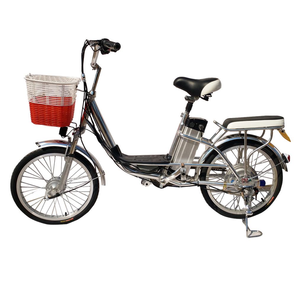 electric bicycle 250w kits/electric cycle india price/carbon fibre electric bike