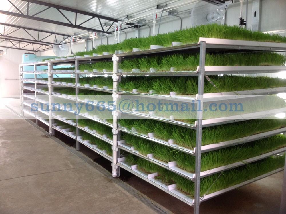 how to make hydroponic fodder machine