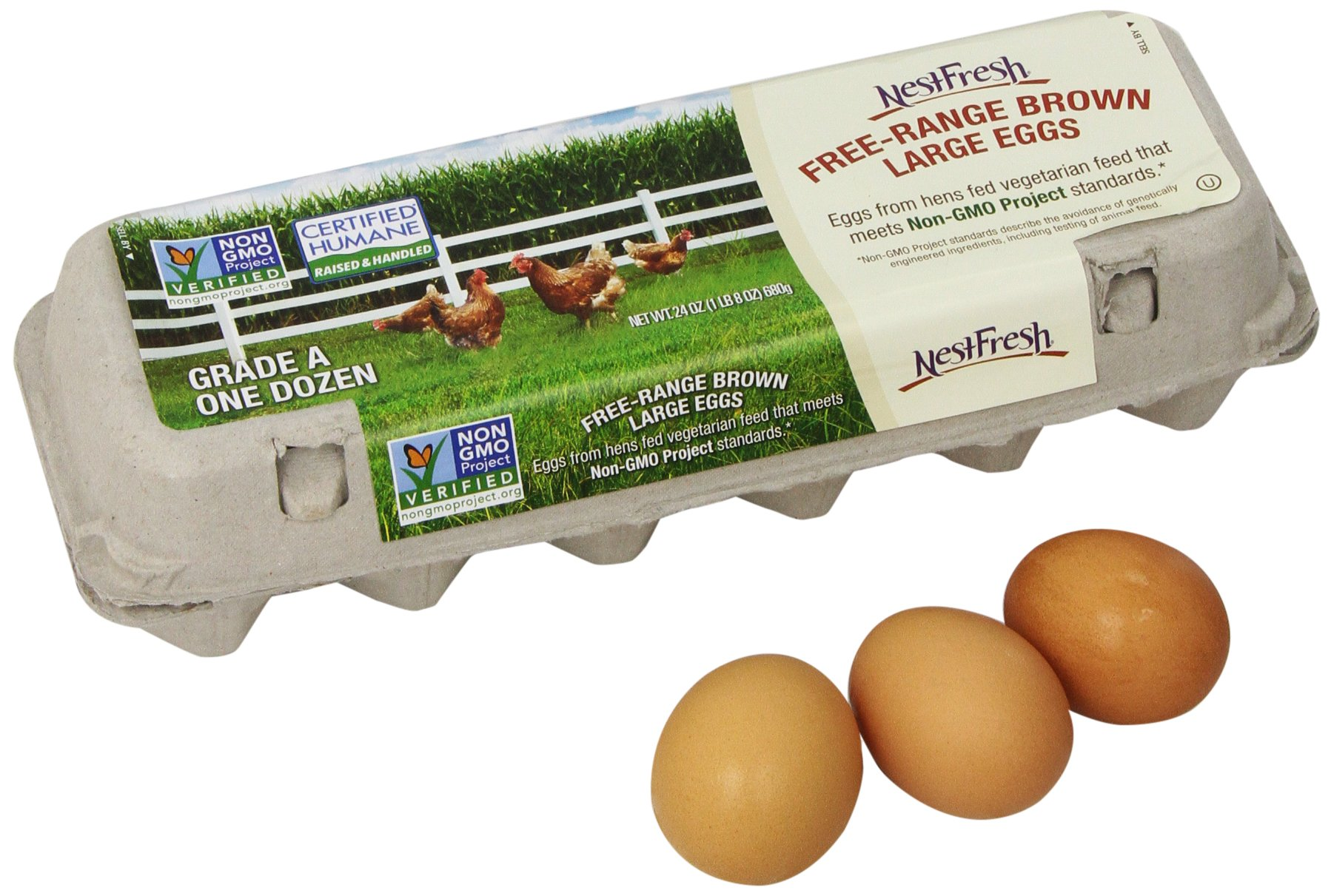 NestFresh Free Range Non-GMO Large Grade A Eggs, 12 ct