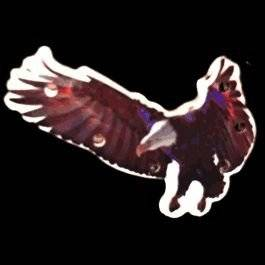Flying Eagle Flashing Body Light Lapel Pins by Blinkee