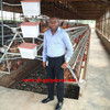 Factory Design 50000 chicken house 120 birds cage for layer chiken