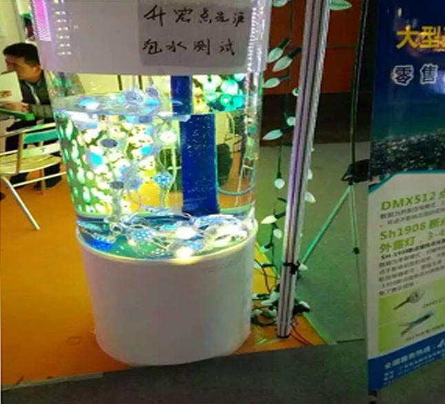 New Style Flower Cover 5V 12mm pixel UCS1903 led module light Digital RGB 5050 White LED