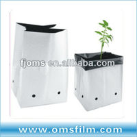 hydroponics fruit and vegetable Planting Bags