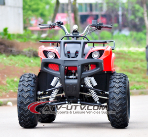 The CE certification 1000W Shaft Drive electric quad atv/Mini go kart for sale