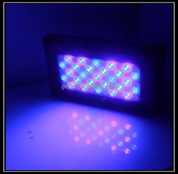 Chinese Led Aquarium Light 120w Remote Control Led Reef Light ...