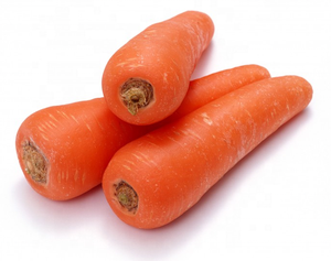 High yield 7 inches long red f1 hybrid Vegetable carrot seeds price