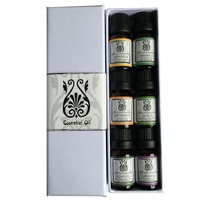 Hottest Top 6 Essential Oils 100% Pure & Therapeutic grade gift set --826108