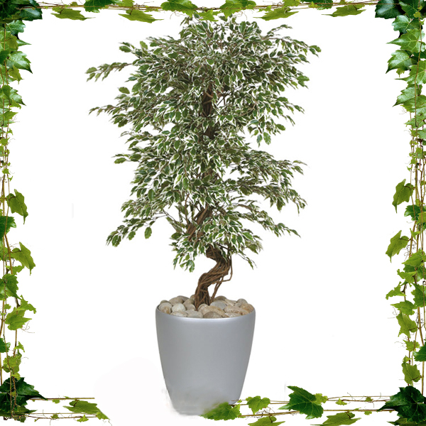 China Manufacturing Cheap Price Wholesale Outdoor Garden Decorative Artificial Plants For Sale