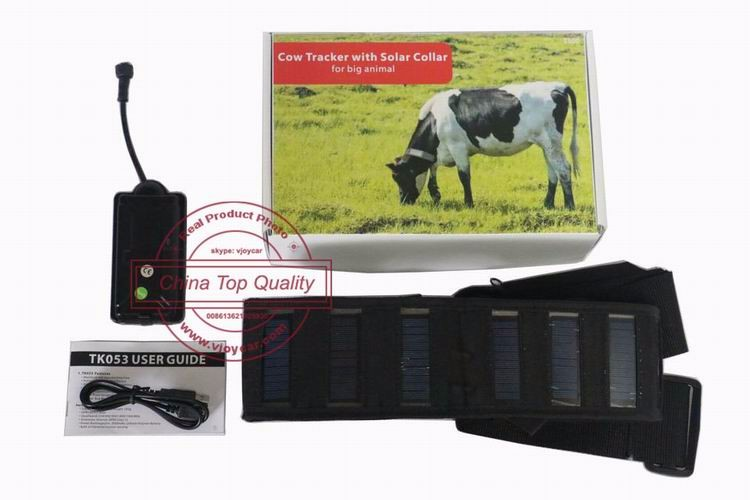 Cattle Solar Tracker 5000 3G Animal Camel Cow Collar GPS FREE IOS APP FREE GIFT