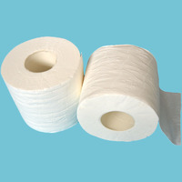 Embossed Virgin Wood Pulp 2 Ply soft toilet paper roll wholesale tissue