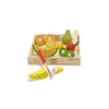 Fruit & Vegetable Cutting Toy, Wooden Educational Toy, Pretend & Play Toy, Wholesale Available