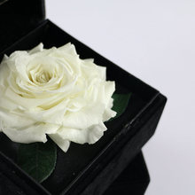 New Year Accessories Names of Decorative Flowers Rose Box