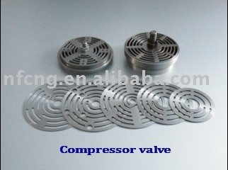 Suction & Discharge Valves For CNG Compressor