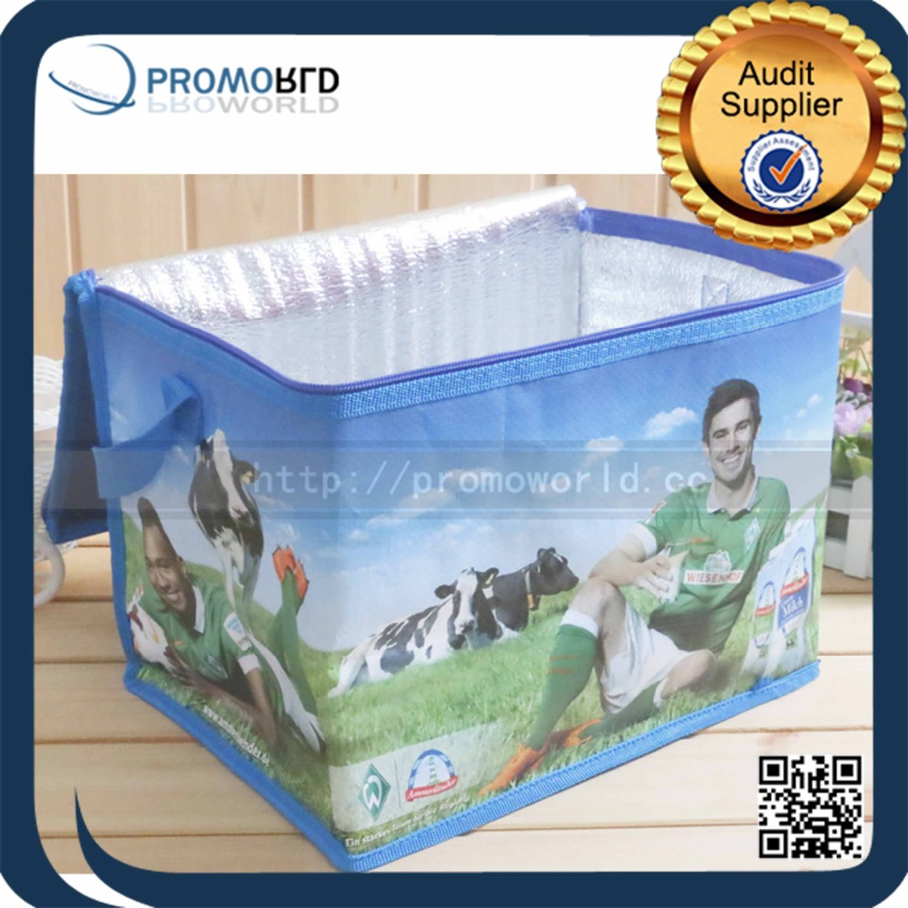 Cheap Bulk Recycle Cake Cooler Bag