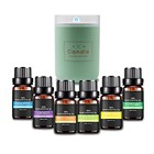 100% Pure Aromatherapy Essential Oils Gift Set 12 Bottles/10ml For Massage Humidifier Diffuser