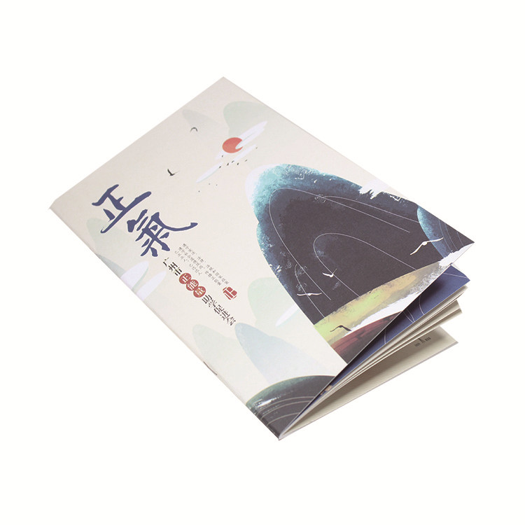 Factory low price full color printing passport size booklet