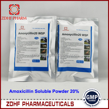 Amoxicillin obat apa