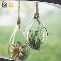 Knotted Rope Terrarium, Large Hanging Teardrop Terrarium with Air Plant