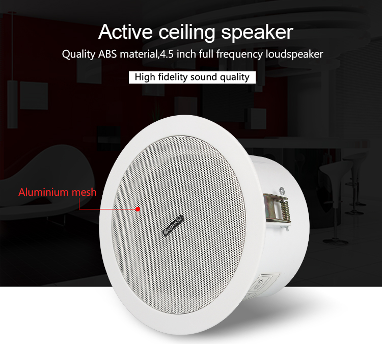 2017 Trending Products Wireless Roof Speakers 6W Ceiling Speaker Sound System PA