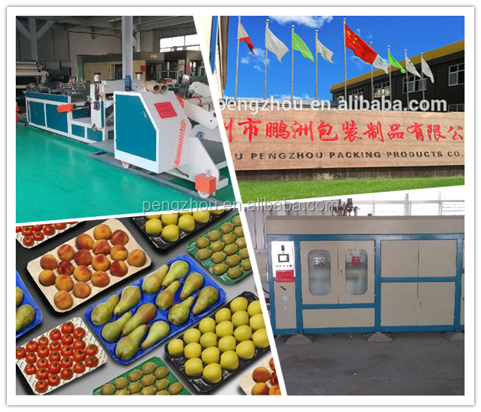 Fda&sgs Approval China Professional Manufacturer Food Grade Vacuum ...