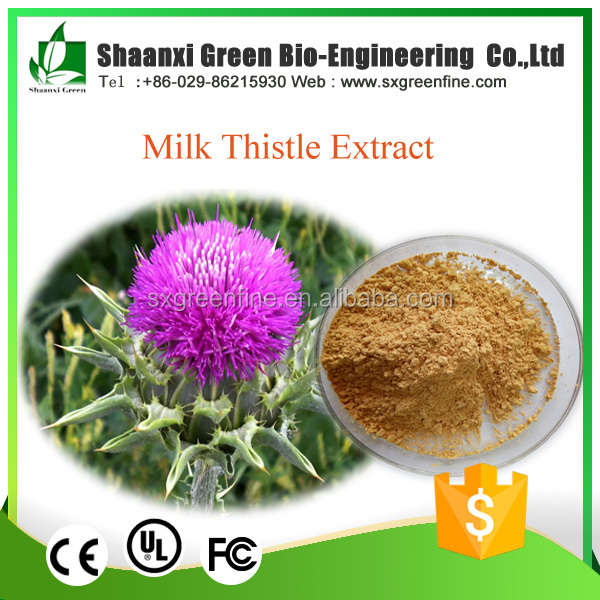 Liver Protection Supplement Milk Thistle Extract silymarin price