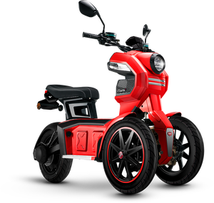 Super Cool Electric 3 Wheel 60V 2000W Powerful Motorcycle, Front 2 Wheel Tank Type Electric Scooter, Racing Three Wheel Scooter