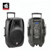 PS-1415BT-IWB 15 Inch Karaoke trolley portable battery powered party speaker with BT