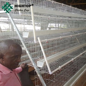 Hightop Hot Sale A type poultry farm coop layer eggs chicken cages for sale