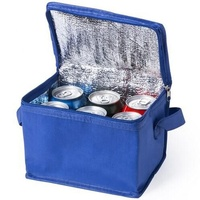 Wholesale Large Insulated Breastmilk beer 6 can picnic Cooler Bag to Keep Cool