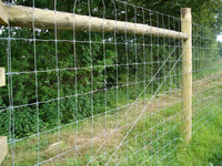 8 ft. High Game Fence