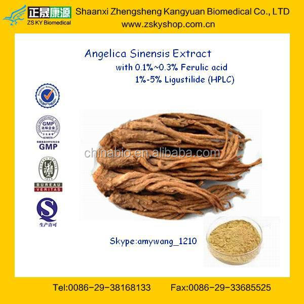 Chinese Angelica Sinensis Root Extract/dong quai extract powder