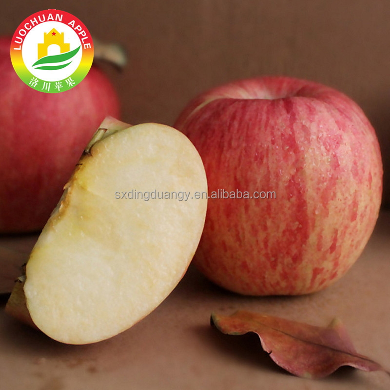 2017 High quality shaanxi exports red apples fuji apples thailand